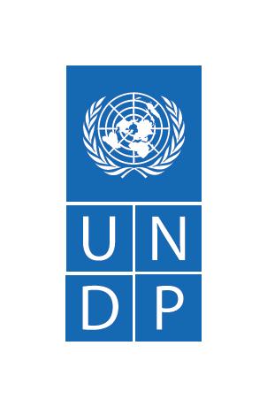 UNDP-Logo-Blue-Medium